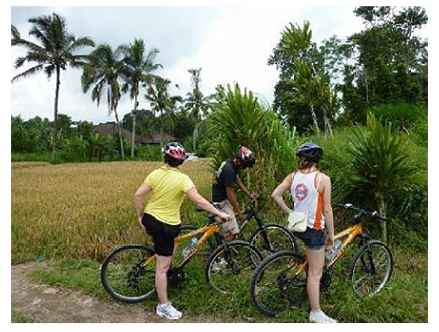 Bicycle Tour in Zanzibar